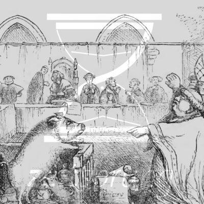ZS192: Tiere vor Gericht