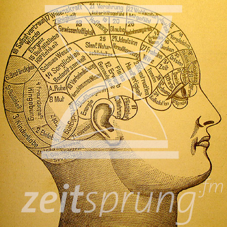 ZS217: Wie Joseph Haydn den Kopf verlor